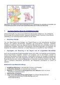 Gastbeitrag: Internationalisierung mit dem Basis ... - NA beim BIBB - Page 3