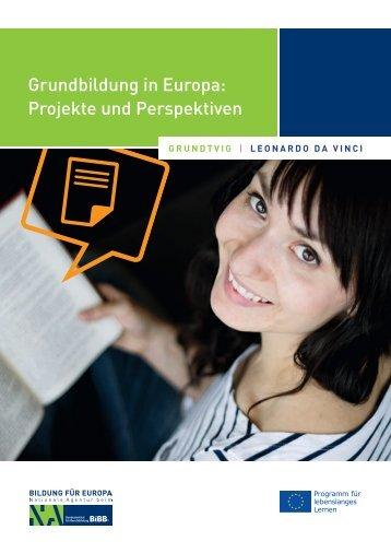 als PDF-Datei zum Herunterladen - NA beim BIBB