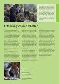 Inklusive Bildung in Europa: Weg frei für ... - NA beim BIBB - Page 3
