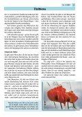 Neue Heizung? - Die Evangelisch-Lutherische Kirchengemeinde im ... - Seite 5