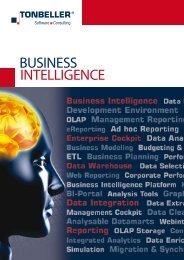 Beyond Business Intelligence (PDF, 351 KB) - Tonbeller