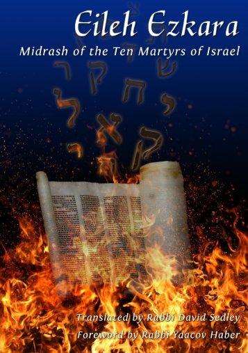 Rabbi Yaacov Haber - TorahLab