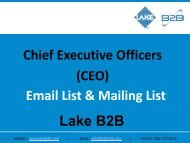 CEO Email Lists has customized information for clients