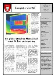 Energiebericht 2011 - Emmerich