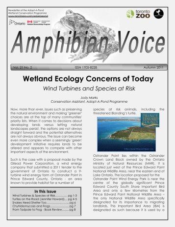 Wetland Ecology Concerns Of Today - Toronto Zoo