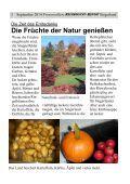 Siegerländer Herbst - Seite 5