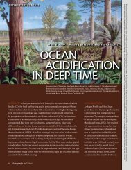 oceaN acidiFicatioN iN deep time oceaN acidiFicatioN iN deep time