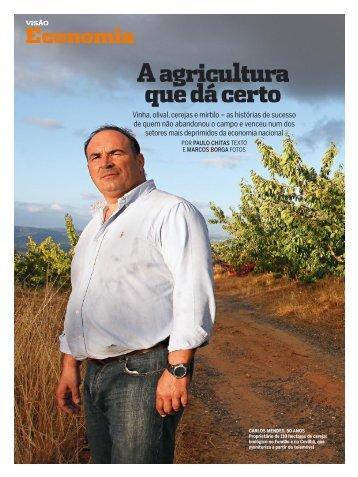 Vinho A - TextoVirtual.com