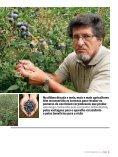 Vinho A - TextoVirtual.com - Page 4