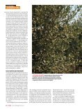 Vinho A - TextoVirtual.com - Page 5