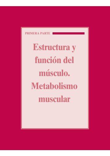 Estructura y función del músculo. Metabolismo muscular