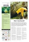 GOTLANDS ANNONSBLADvecka 36, torsdag 8 september 2011 ... - Page 4