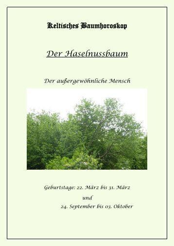 Keltisches Baumhoroskop Der Haselnussbaum