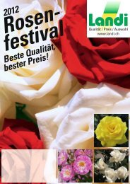 rosenfestival_12.pdf (pdf / 3738 KB)