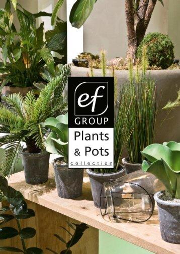 Plants & Pots II Euroflor