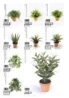 Plants & Pots II Euroflor - Page 2