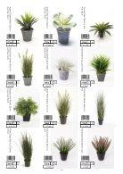 Plants & Pots II Euroflor - Page 4