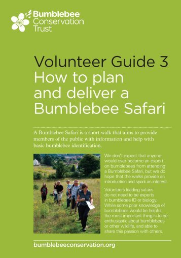 Volunteer guide 3: How to plan and deliver a bumblebee safari (pdf ...