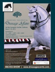 The Rancho Valencia Dressage Affaire (2013) - CDI Prize List