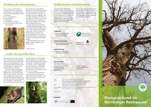 Ein Wald voller Biotopbäume - Bayerische Staatsforsten