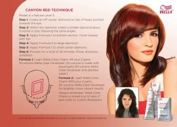CANYON RED TECHNIQUE - Wella