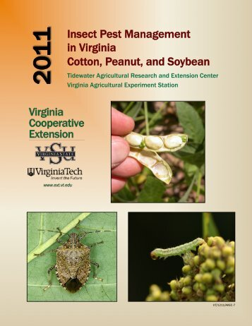 Insect Pest Management in Virginia Cotton, Peanut, and Soybean