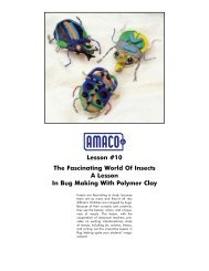 Lesson #10 The Fascinating World Of Insects A Lesson In ... - Amaco