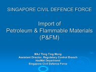 Import Of Petroleum & Flammable Materials - Singapore Customs