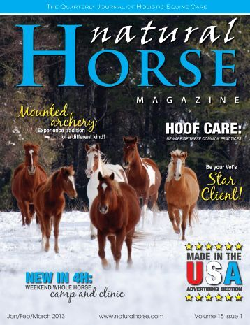 How to groom your horse in the winter - Reinhold's Horse Wellness ...