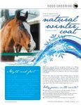How to groom your horse in the winter - Reinhold's Horse Wellness ... - Page 2