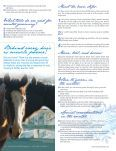 How to groom your horse in the winter - Reinhold's Horse Wellness ... - Page 3