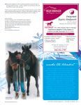 How to groom your horse in the winter - Reinhold's Horse Wellness ... - Page 4