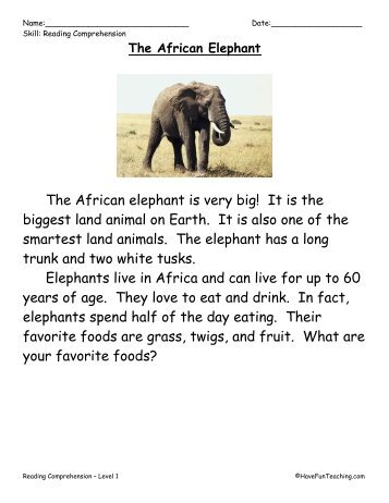 Reading Comprehension The African Elephant - Have Fun Teaching