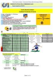 Centro Sportivo Italiano Comitato Provinciale di Verona - CSI Verona