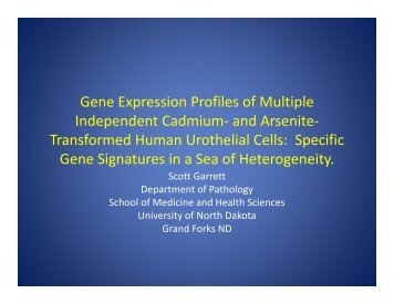 Gene Expression Profiles of Multiple Independent Cadmium- and ...