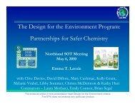 The Design for the Environment Program: Partnerships for Safer ...