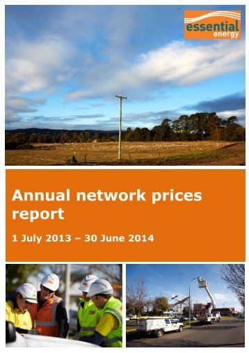 Annual Network Prices Report 2013/14 - Essential Energy