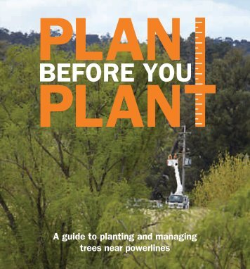 To download our comprehensive Plan Before ... - Essential Energy