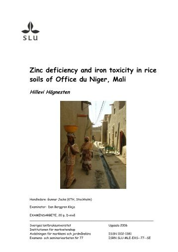 Micronutrient deficiencies in indian soils and field for Soil zinc deficiency