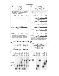 Supp. Info. - Pearson Lab