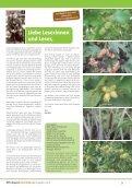 MPH Magazin 5/2013 als PDF - MPH - Mensch Pferd Hund - Page 3