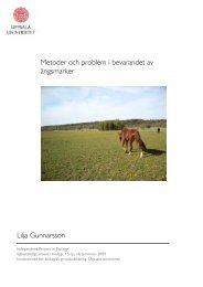 Arbetet - Institutionen för biologisk grundutbildning - Uppsala ...