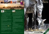 Katalog als Download - Masterhorse GmbH