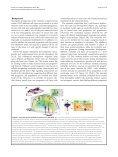 Provisional PDF - Neural Development - Page 3