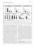 Provisional PDF - Neural Development - Page 7