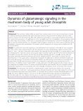 Dynamics of glutamatergic signaling in the mushroom ... - HAL - ESPCI - Page 2