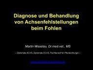 Diagnose und Behandlung von Achsenfehlstellungen beim Fohlen