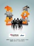消费电子行业分析报告 - Made-in-China.com - Page 2