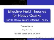 Heavy Quark Effective Theory - the School on Flavour Physics 2010