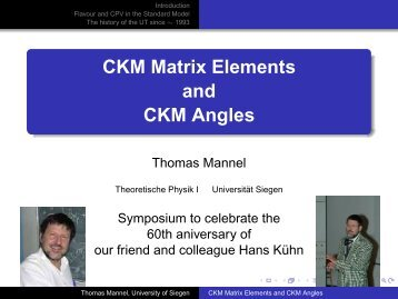 CKM Matrix Elements and CKM Angles - Theoretische Physik 1 ...